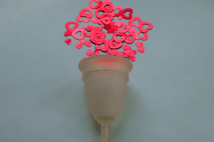 Bajo la Carpa Roja - Productos reutilizables para una menstruación sustentable